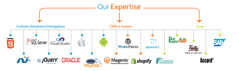 our-expertise